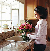 Woman holding stargazer lilies in sink