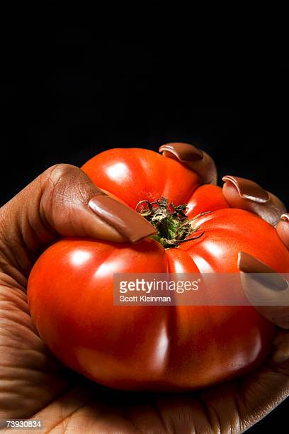 Woman holding tomato in studio, close-up of hand