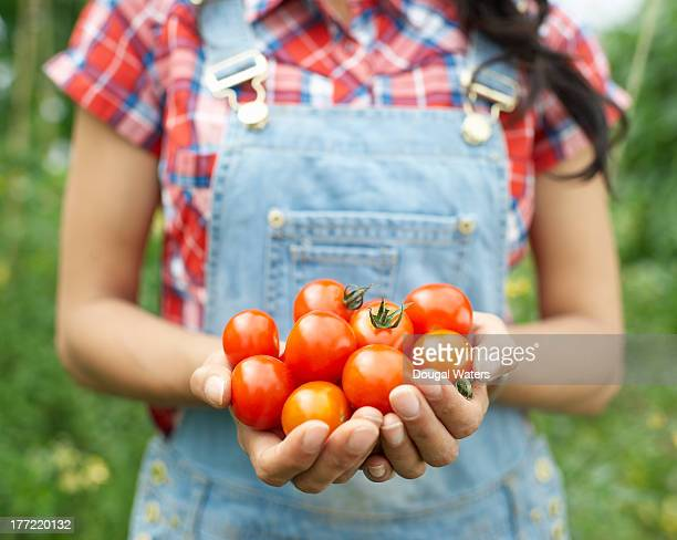 Woman holding tomatoes in hands.