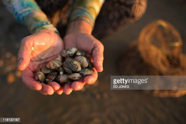 A woman holds a handful of clams as she digs during low tide on Lantau island Hong Kong on July 3 2011 Whether for business or pleasure the tradition...