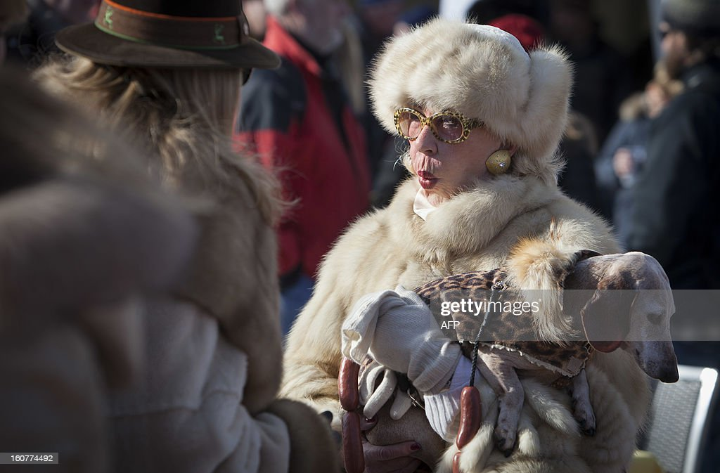 PEDRERO---A woman holds her dog dressed in fake fur and tied with a leash made of fake plastic sausages at the White Turf horse racing event in St. Moritz on February 3, 2013. The races are held on the frozen lake of the Swiss mountain resort and are famous among the jet set. AFP PHOTO / BORIS HEGER
