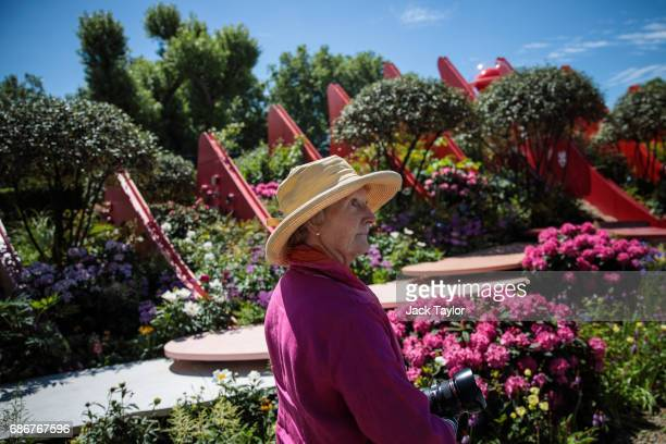 A woman in a sun hat walks past the 'Chengdu Silk Road Garden' at the Chelsea Flower Show on May 22 2017 in London England The prestigious Chelsea...