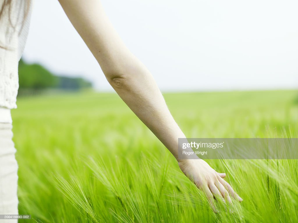 Woman in beetroot field, arm outstretched, mid section, rear veiw