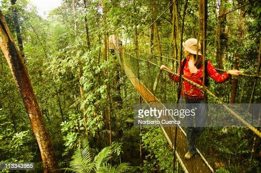 Woman in canopy walkway