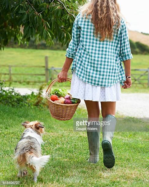 Woman in farmyard carrying basket of vegetables.