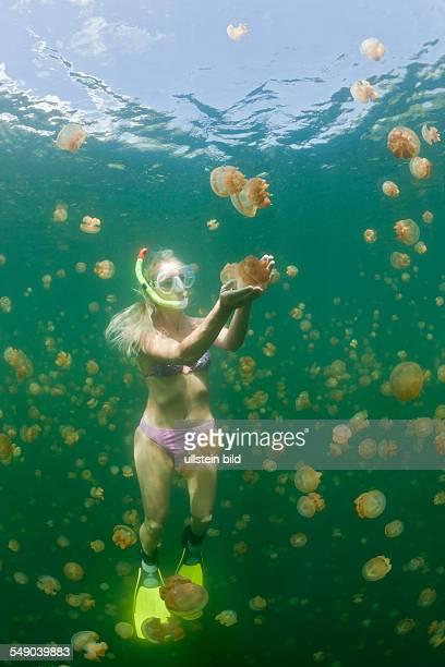 Woman in Jellyfish Lake Mastigias papua etpisonii Jellyfish Lake Micronesia Palau