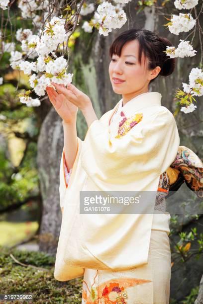 着物を見ている女性の桜の花