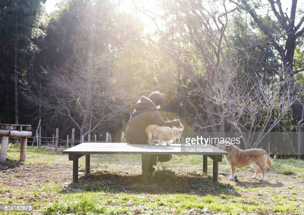 Woman in park with dogs.