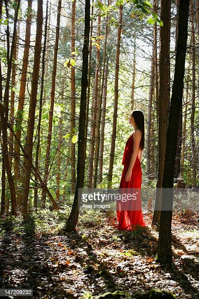 Woman in red dress standing in forest