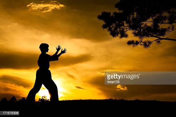 Frau silhouette, Übung Kampfsport karate.  Sonnenuntergang.  Im Freien.  Himmel.