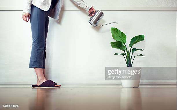 Woman in slippers watering  plant