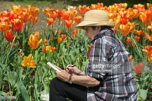 CONTENT] woman in straw hat sketching in a group of orange tulips at the Brooklyn Botanical Gardens Brooklyn New York City