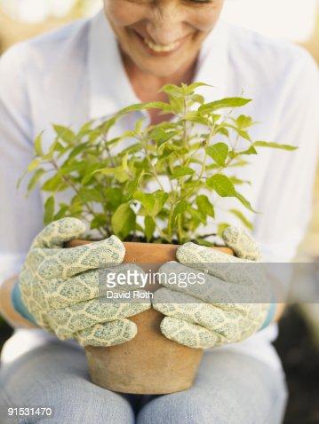 woman in the garden : Stock Photo