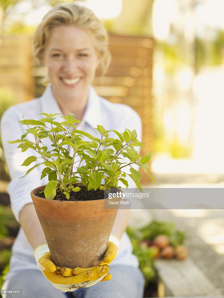 woman in the garden : Stock Photo