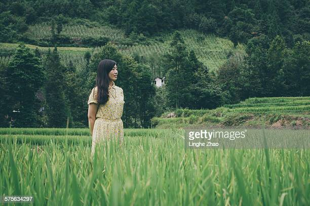 Woman in the rice fields
