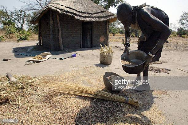 A woman in the southern Sudanese town of Rumbek cleans 16 January 2005 grain the main staple here The United Nations has warned that the south faces...