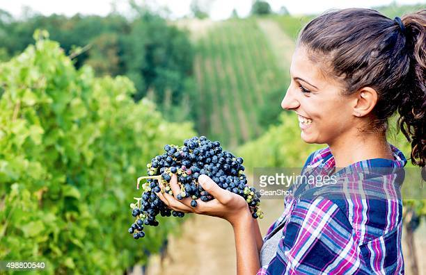 Woman in Vineyard with Grapes