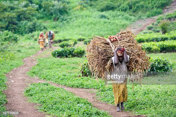 Woman is carrying a heavy load of beans, Congo, Africa