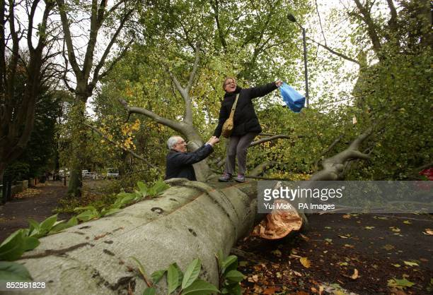 A woman is helped over a fallen tree lying across the road in Shepherd's Hill north London due to the storm affecting parts of the UK