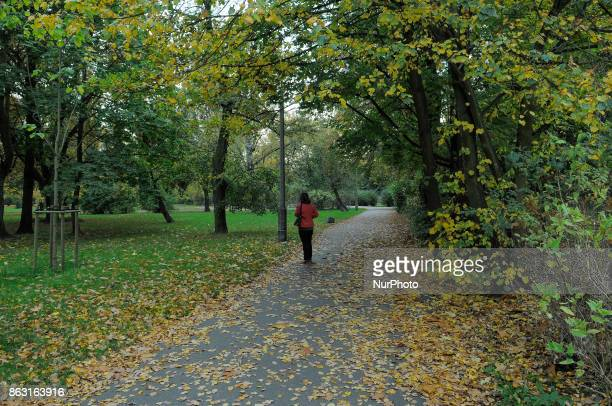 A woman is seen standing in the Wincenty Witos park in Bydgoszcz Poland on 19 October 2017
