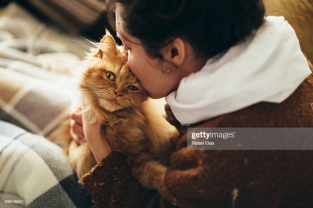 Woman kissing cat : Stock Photo