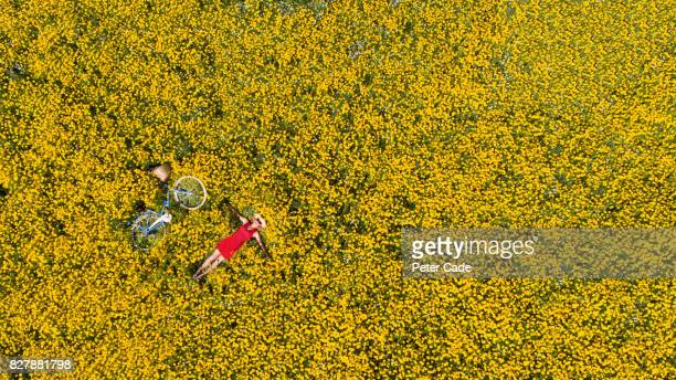Woman laying in flower meadow with bycicle