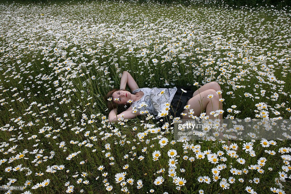 Woman Laying On Wild Daisies Field Stock Photo | Getty Images