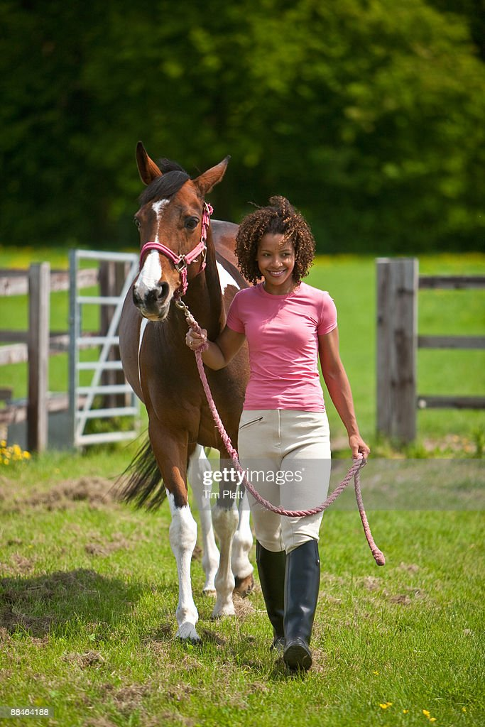 Woman leading a horse from a field. : Stock Photo