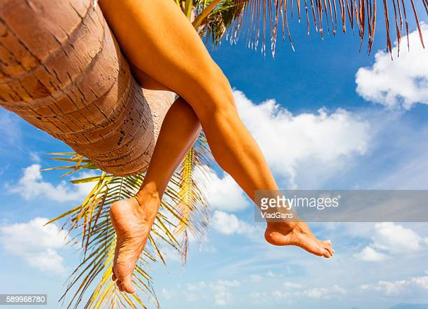 woman legs on tropical back