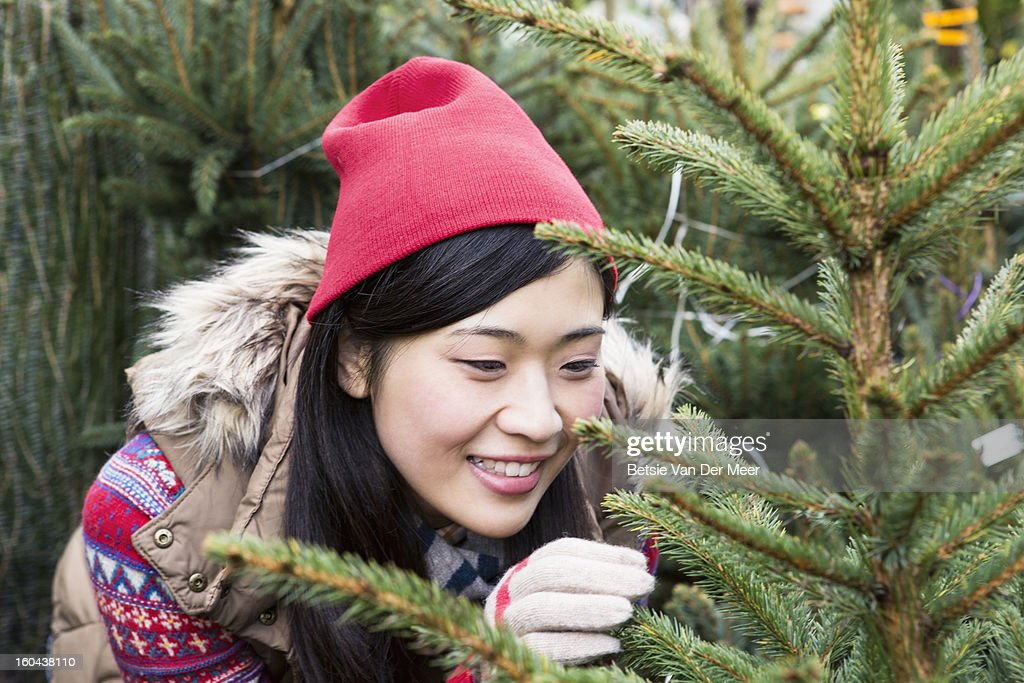 Woman looking at Christmastree in gardencentre. : Stock Photo