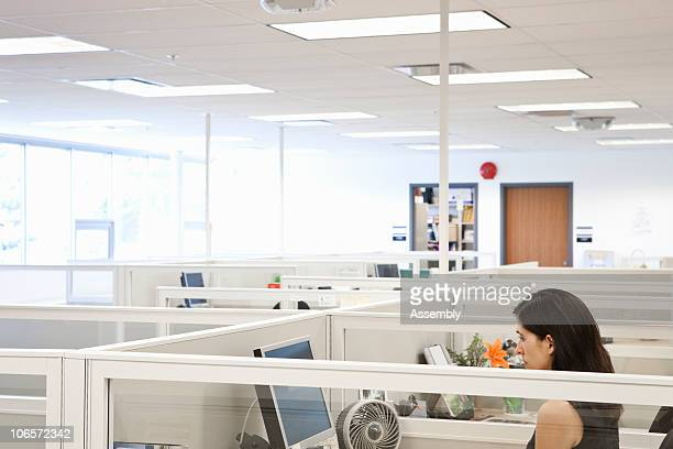 woman looking at computer in office cubicle
