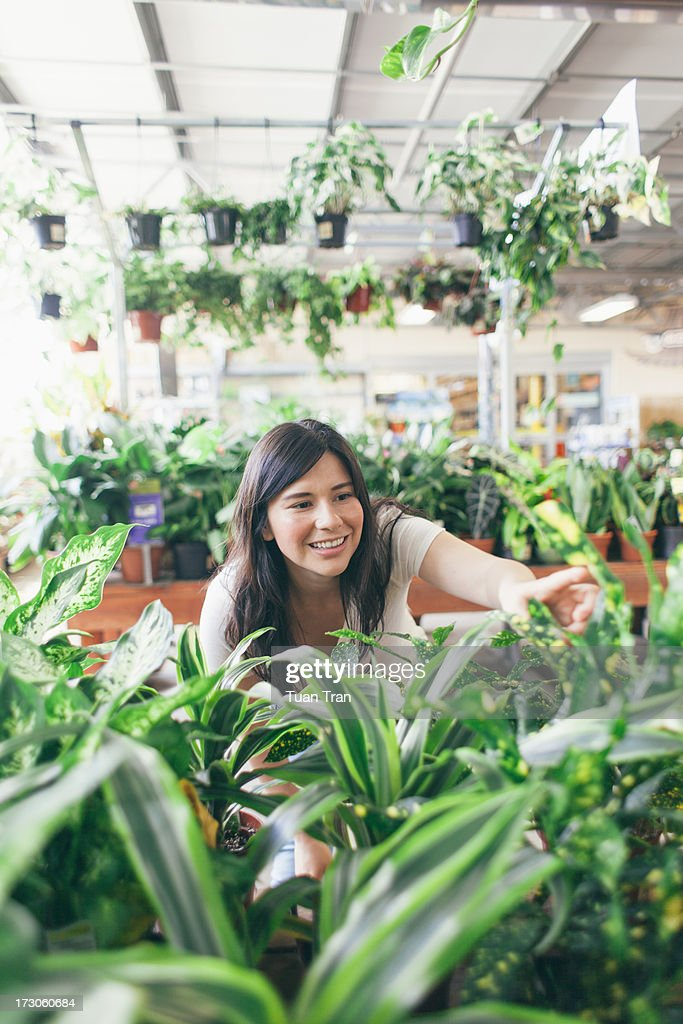 woman looking at plants : Stock Photo