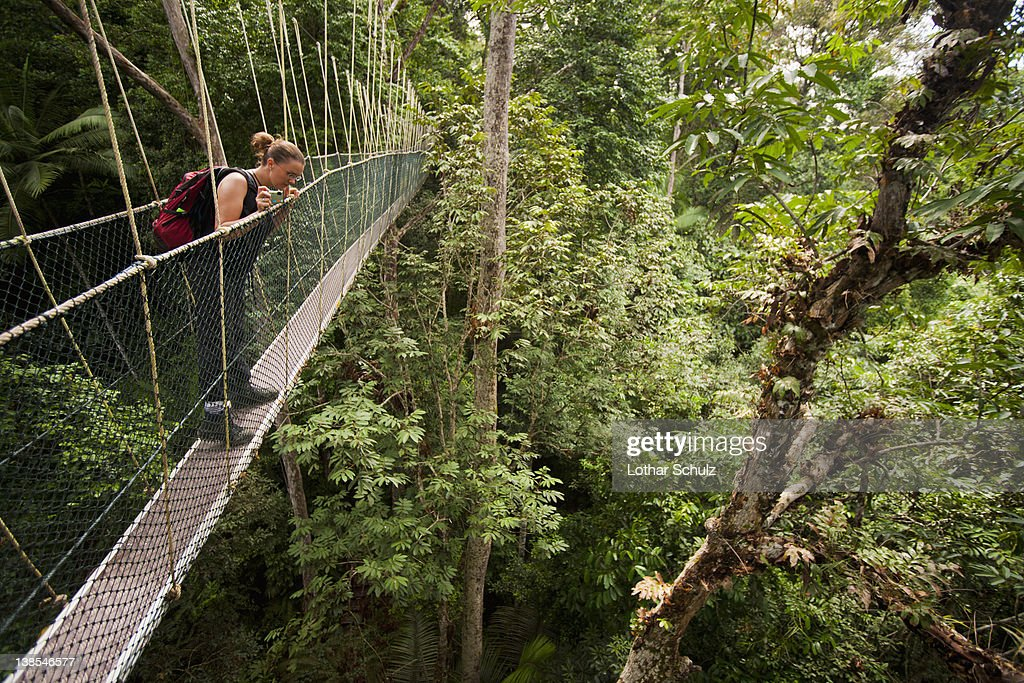 A woman looking down from a tree canopy walkway, Teman Negara National Park, Malaysia
