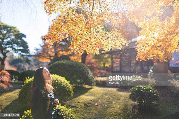 Woman looking up at autumn leaves