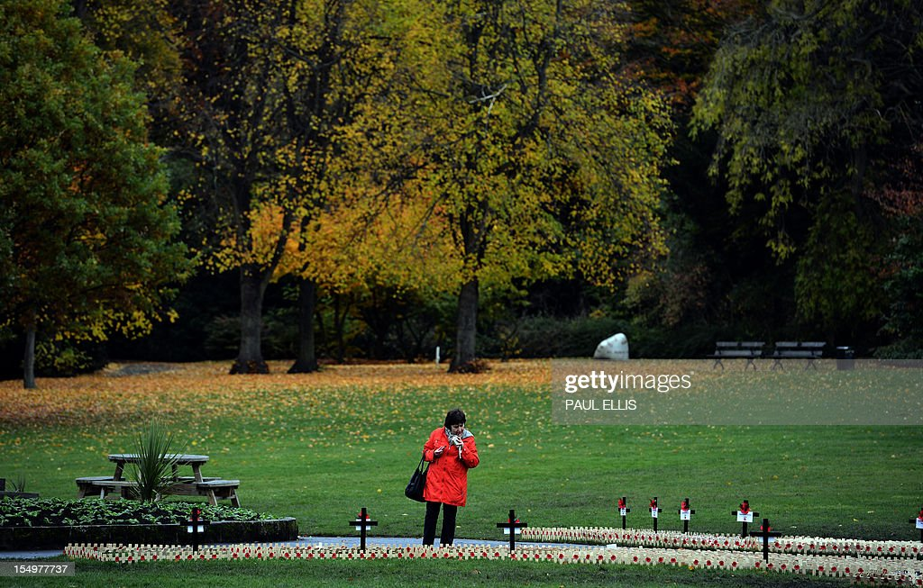 A woman looks at a memorial field planted with wooden crosses bearing poppies at Saltwell Park in Gateshead, north-east England, on October 29, 2012 ahead of Remembrance Day (Armistice Day) on November 11. AFP PHOTO/PAUL ELLIS