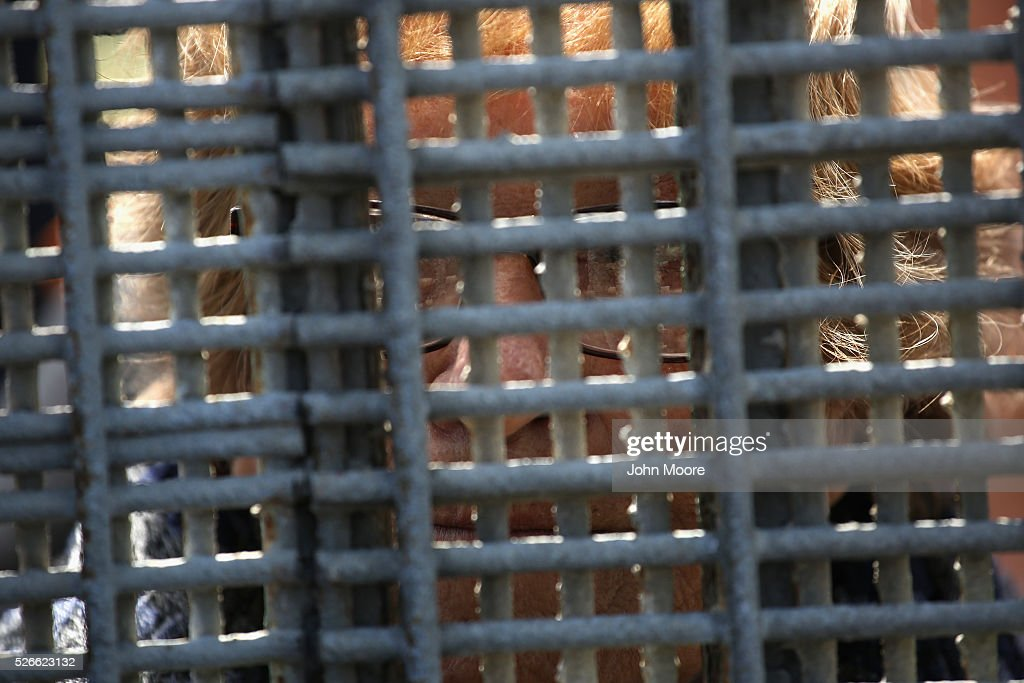 A woman looks from Tijuana, Mexico through the U.S.-Mexico border fence on April 30, 2016 into San Diego, California. Five families, with some members living in Mexico and others in the United States, were permitted to meet and embrace for three minutes each at a door in the fence, which the U.S. Border Patrol opened to celebrate Mexican Children's Day. It was only the third time the fence, which separates San Diego from Tijuana, had been opened for families to briefly reunite. The event was planned by the immigrant advocacy group Border Angels.