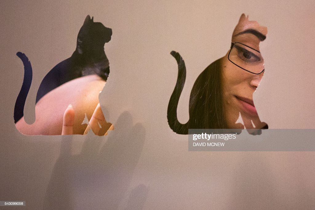 A woman looks through a cat-shaped window at cats up for adoption by the Society for the Prevention of Cruelty to Animals during CatConLA, a convention to show cat-related products and ideas in art, design, and pop culture, on June 25, 2016 in Los Angeles, California. / AFP / DAVID