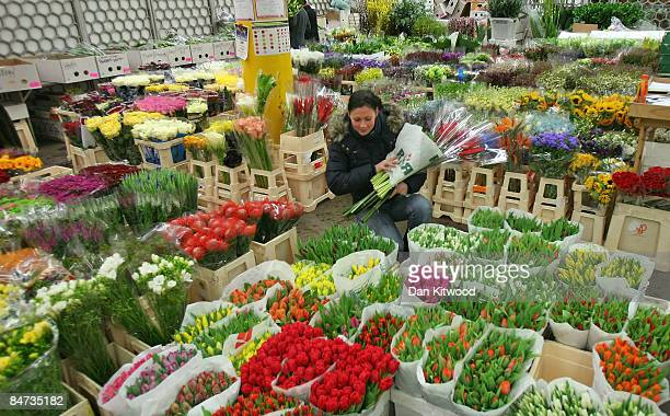A woman looks through a selection of flowers at the New Covent Garden Flower Market on February 11 2009 in London England New Covent Garden Flower...
