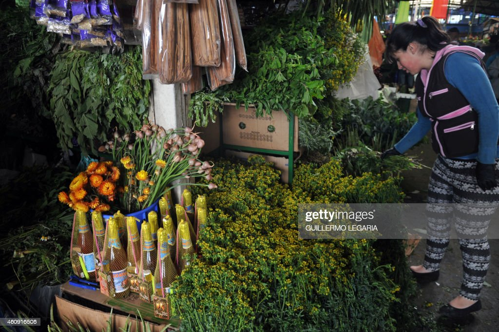 A woman makes bundles of bitter and sweet herbs near bottles of champagne used for purification baths, as New Year's rituals, at a stand of Paloquemao market in Bogota, Colombia, on December 30, 2014. In great part of Latin America, New Year is celebrated with deeply rooted omens as wheat ears and yellow flowers, herb and champagne baths, walking around the block with a suitcase, having lentils in the pocket, putting potatoes under the bed and the ritual of the 12 grapes. AFP PHOTO/Guillermo LEGARIA /