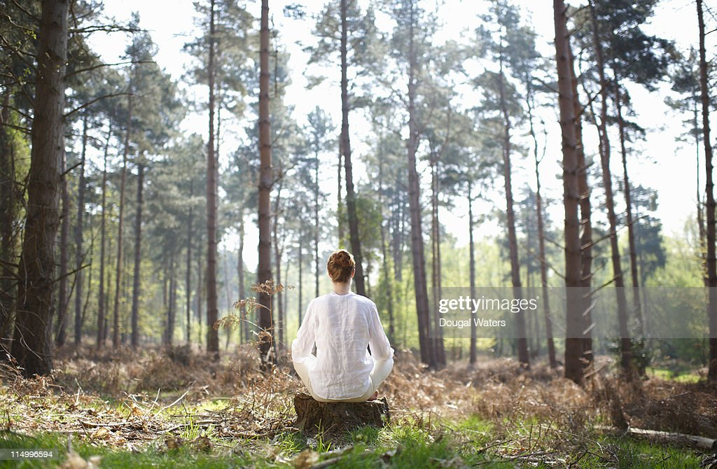 Woman meditating in woodland setting. : Stock Photo