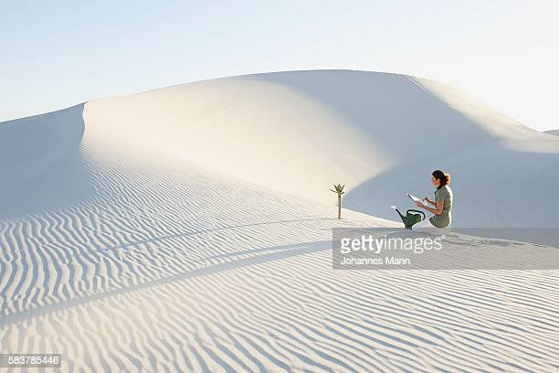 Woman Monitoring Tree Growing in Desert