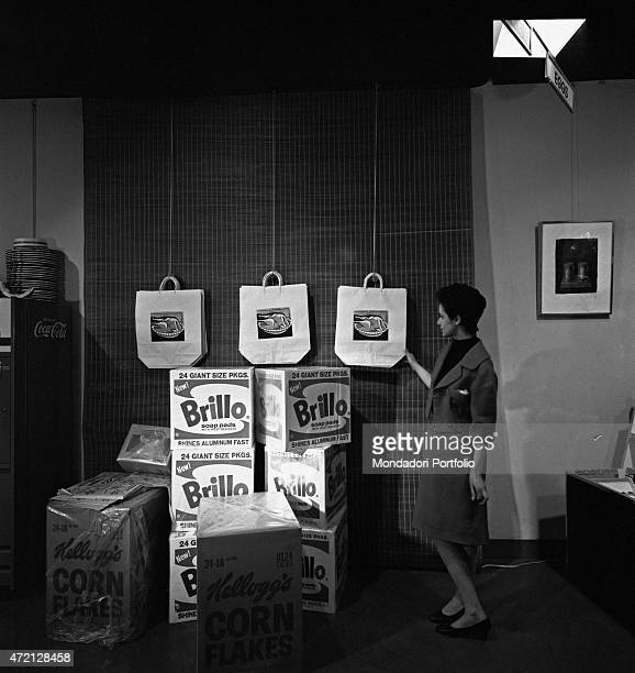 'A woman observing the Turkey Shopping Bags by Roy Lichtenstein and the Brillo Soap Pads Boxes by Andy Warhol displayed at Il segno art gallery for...