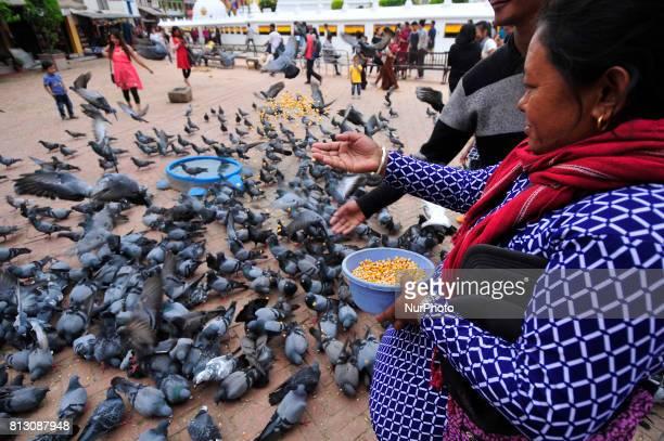 A woman offering holy maize grains towards pigeon at the premises of Boudhanath Stupa Kathmandu Nepal on Tuesday July 11 2017 Boudhanath Stupa is...