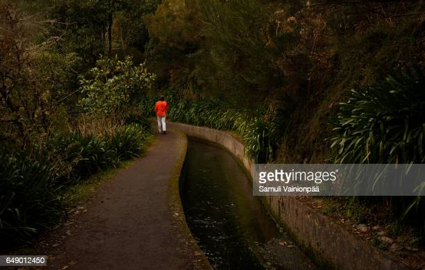 Woman on a levada hike in Madeira, Portugal