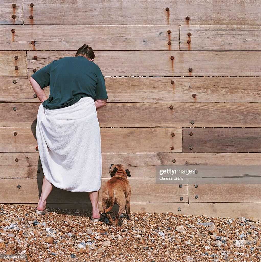 Woman on beach adjusting towel around waist beside dog, rear view : Stock Photo