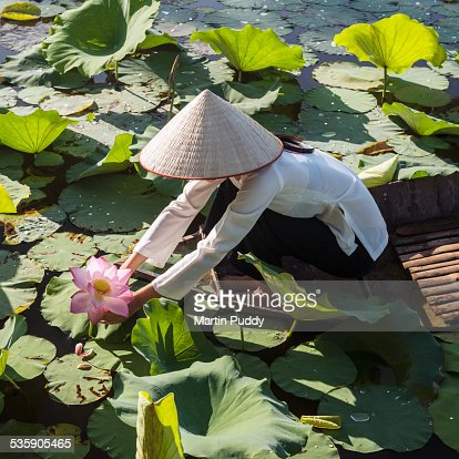 Woman on small boat, picking water lilies