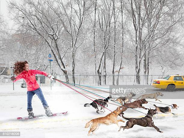 Woman on snowboard getting pulled by dogs