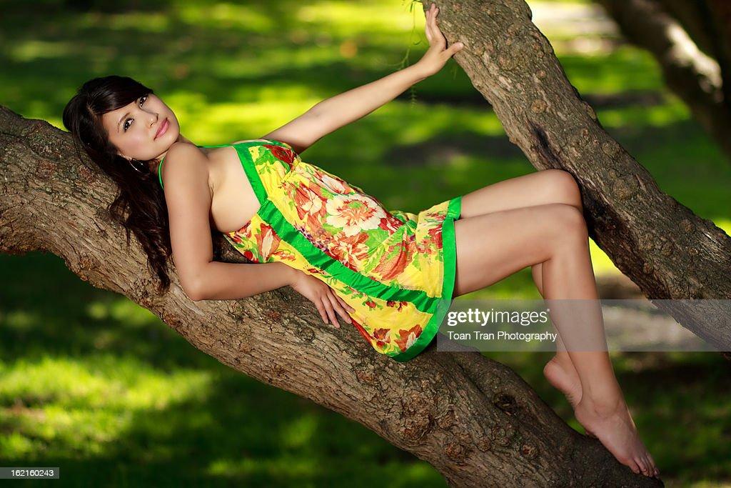 woman on tree : Stock Photo