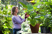 Woman outdoors gardening