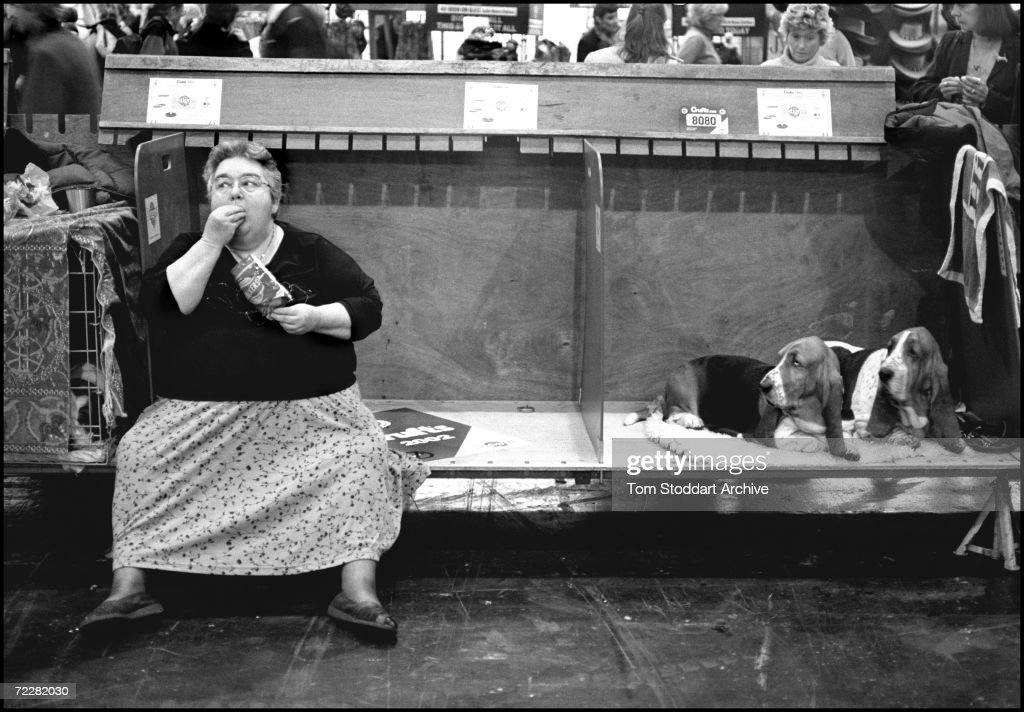 A woman owner eats lunch watched by her Bassett Hounds during the annual Crufts Dog Show held at the National Exhibition Centre, Birmingham.